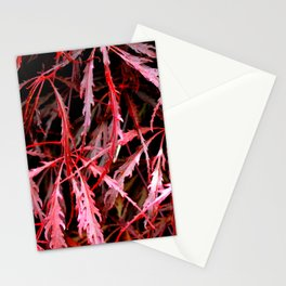Maroon Maple Stationery Cards