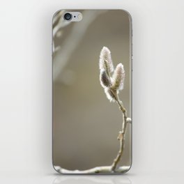 Willow Dreams iPhone Skin