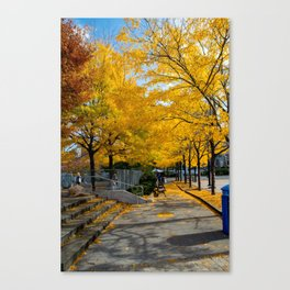 Autumn in NY Canvas Print