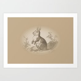 Bunny Rabbit {teddy bear brown} Art Print