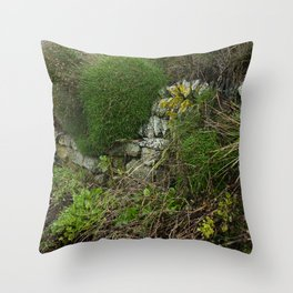 Wall at Church Cove Throw Pillow