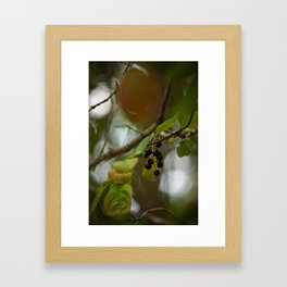 Berry Bokeh Framed Art Print