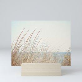 Beach Grass Photography, Calming Coastal Photo Print, Relaxing Beach House Photograph, Seaside Photo Mini Art Print