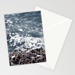 Ice plants on California coast Stationery Cards
