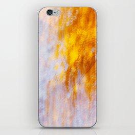 Indian Summer iPhone Skin