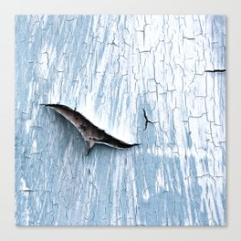 The Gash Canvas Print