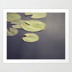 Water Plants Art Print