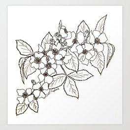 Vine Roses Art Print