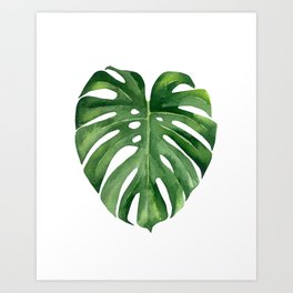 Tropical green leaf. Art Print