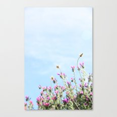 printemps in pink Canvas Print