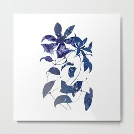 Watercolor Indigo Clematis Vine Metal Print