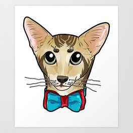 Oriental Shorthair Cat Face Cats Kitty funny gift Art Print