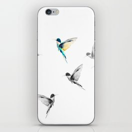 Flying colors iPhone Skin