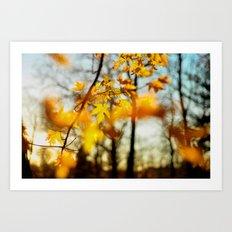 Autumn's Golden Grace Art Print