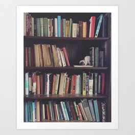 The Bookshelf in the Library, portrait, filtered Art Print