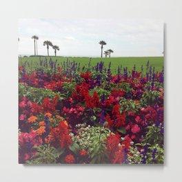 Beautiful East Coastal Flowers Metal Print