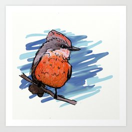 Vermillion Flycatcher Art Print