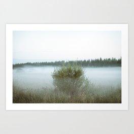 Misty field 5/5 Art Print