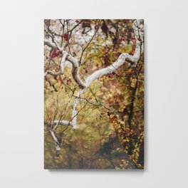 White Branch Metal Print