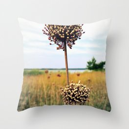 "Yorktown ""Onion"" Throw Pillow"
