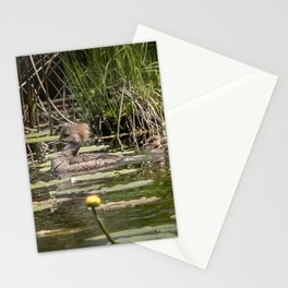 Merganser Family Stationery Cards