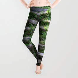 River stairs Leggings