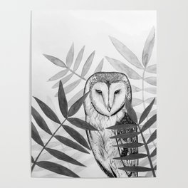 Barn Owl Ink Painting Poster