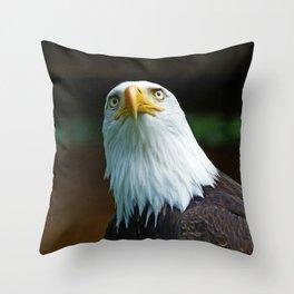 Bald Eagle Head Throw Pillow