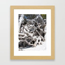 Driftwood, North Captiva Island, Florida Framed Art Print