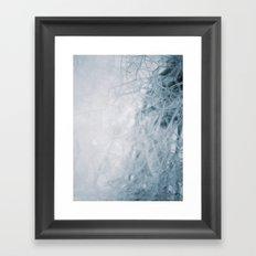 THE BUBBLE NET Framed Art Print
