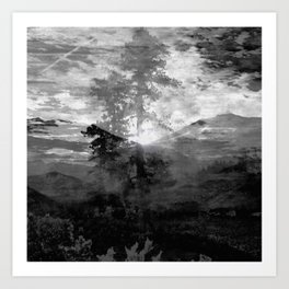 And With the Trees... Art Print