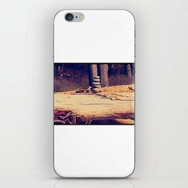 Ruby Beach iPhone Skin