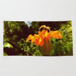 bee of autumn Beach Towel