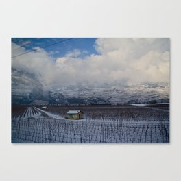 Outside the window Canvas Print