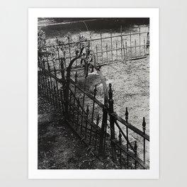 Forgotten Fence Art Print
