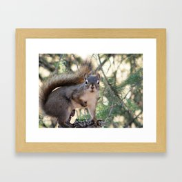 And Who Are You? Framed Art Print