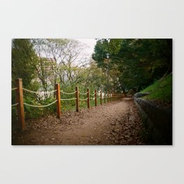 The Path to Autumn Canvas Print