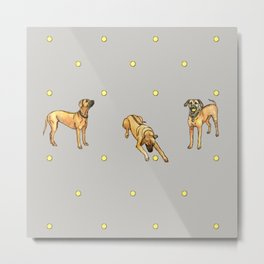 Doggy Fairytale Metal Print