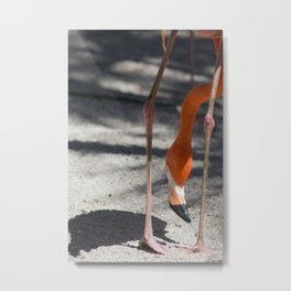 Flamingo Yoga Metal Print