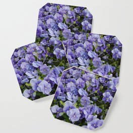 Pansy flower Coaster