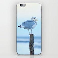 Seagulls at Ocean Dusk iPhone & iPod Skin