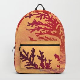 Manganese Dendrites On Fire Backpack