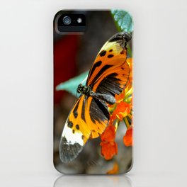 Numata Longwing Butterfly iPhone Case
