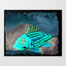 Cirrus/ Cardinal fish Canvas Print
