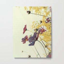 the last autumn flowers Metal Print
