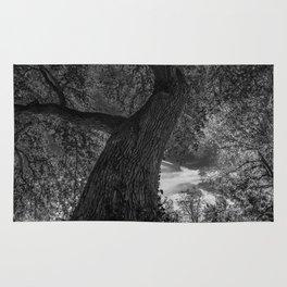 Crooked Oak (black and white) Rug