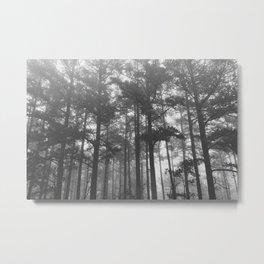 Ozark Fog Metal Print