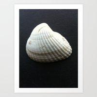 seashell Art Prints featuring Seashell by Yellow Barn Studio
