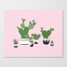 Cactus Love (in pink) Canvas Print