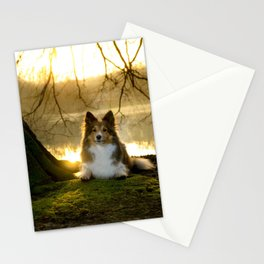 Shetland Sheepdog (Sheltie) Stationery Cards